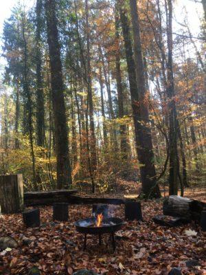 Waldspielgruppe Waldzwerge